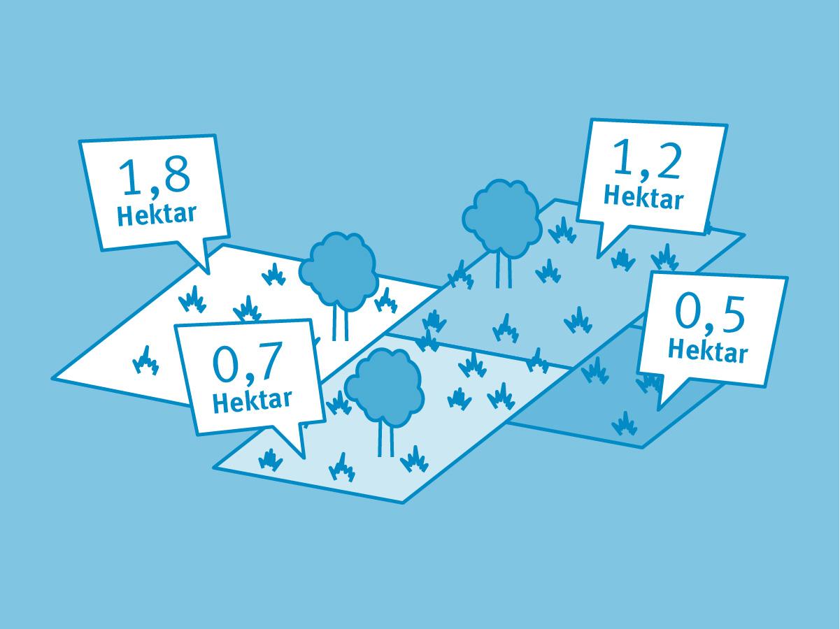 Umrechnungskoeffizienten für Ackerland nach Fläche