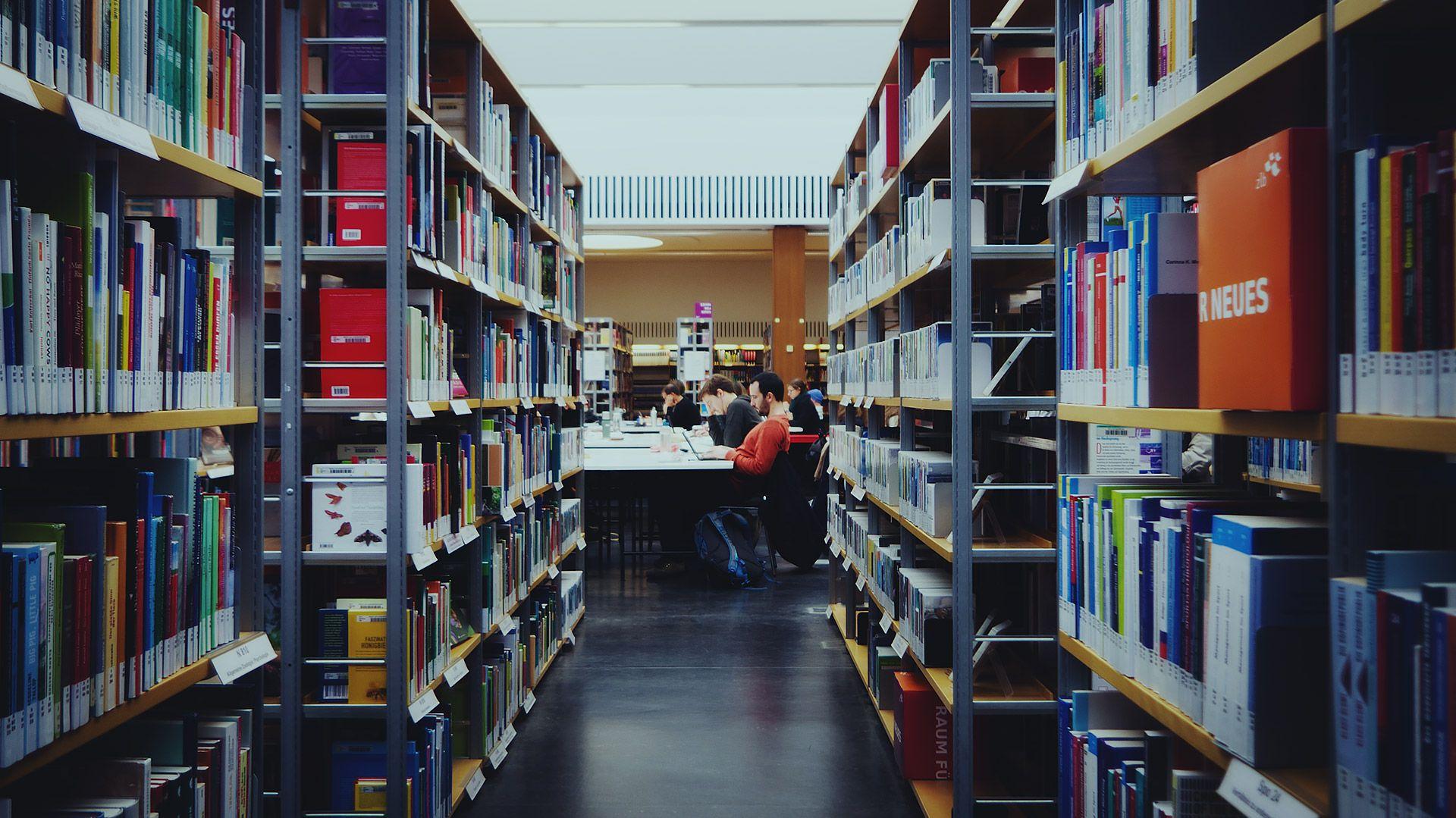 Studierende in einer Bibliothek