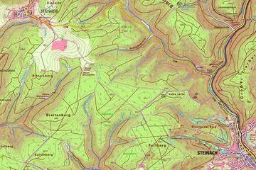 Kartenausschnitt aus der Karte 1:25 000 Steinach